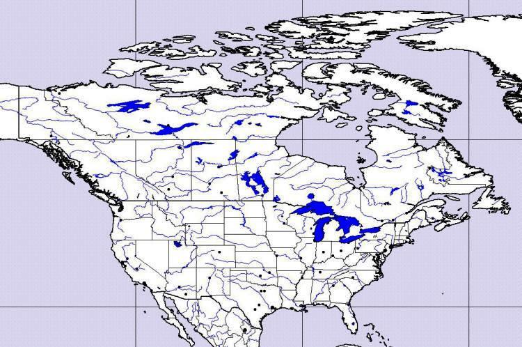 Slepa Mapa Kanady A Usa